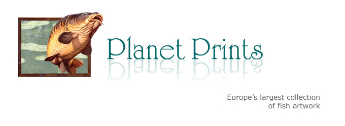 """Planet Prints – The home of fish art."""